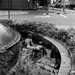 SAB Fountain Swimmers, Newtown, 2006