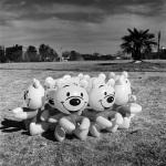 Happy Dolls, Ellis Park, New Doornfontein, 2006