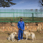 Klaas with Goldie and Jake, 3rd Avenue, Lower Houghton, Johannesburg, South Africa, 2014