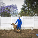 Melu with Kapin and Tuffie, Sutherland Ave, Sandton, Johannesburg, South Africa, 2014