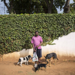 Themba with Diablo, Mia and Picasso, High Road, Orchards, Johannesburg, South Africa, 2014